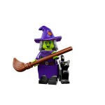 Series 14 Wacky Witch