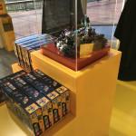 Dreamworld LEGO Store (42)