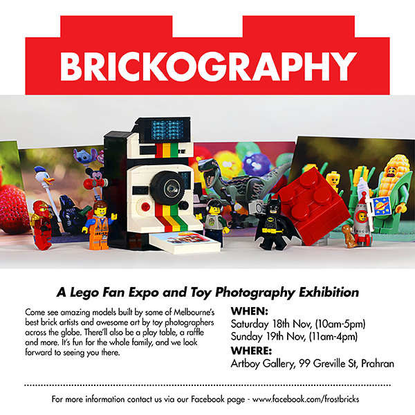 Frost Bricks Brickography Flyer