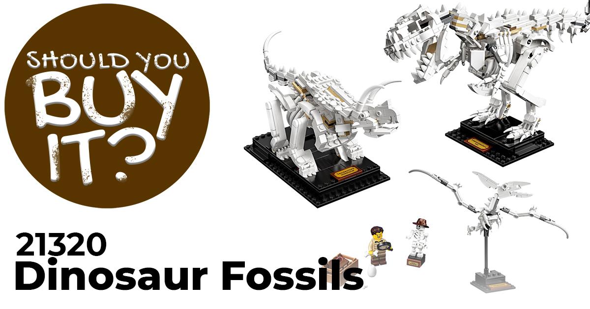 sybi-21320-dinosaur-fossils
