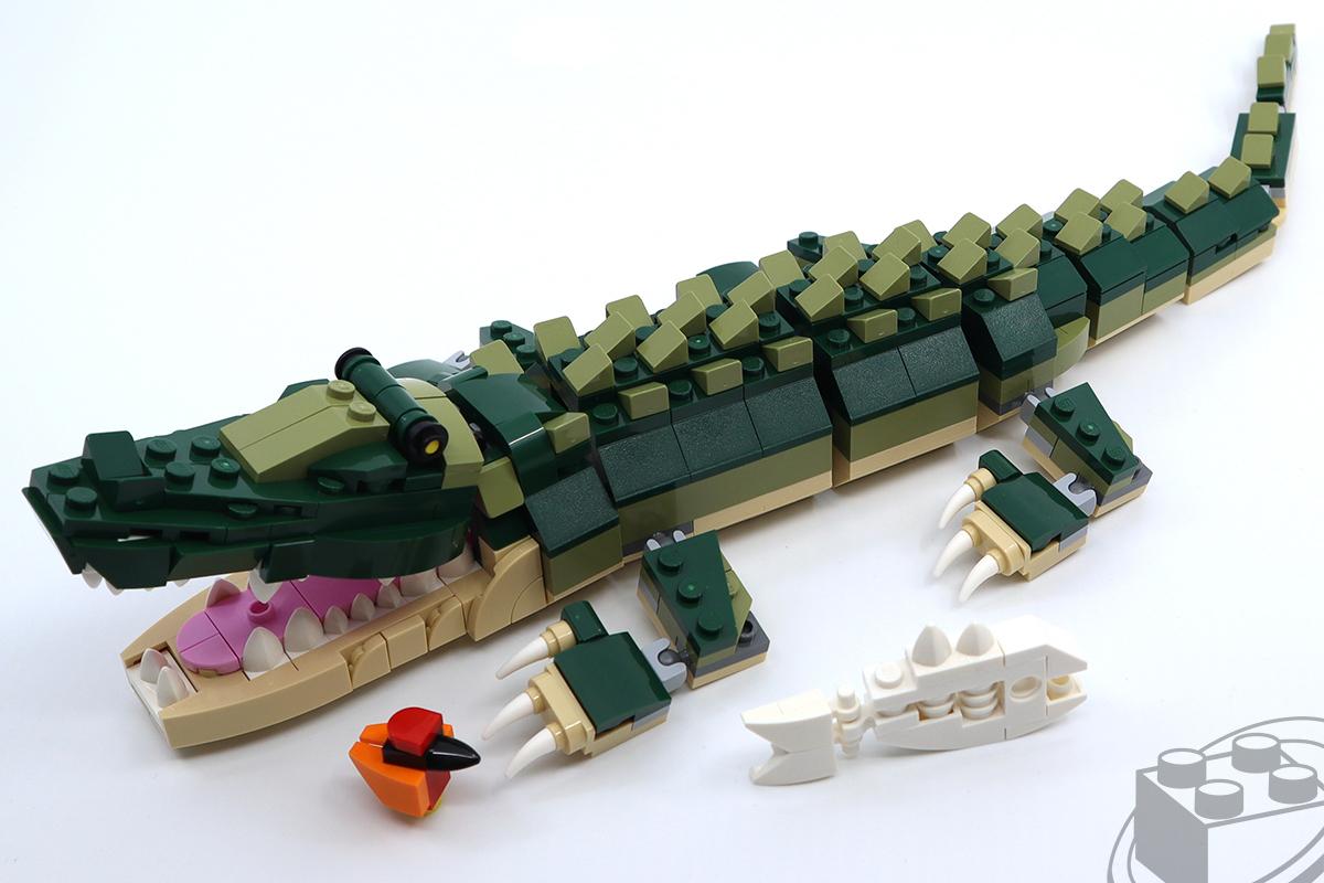 31121-crocodile-4