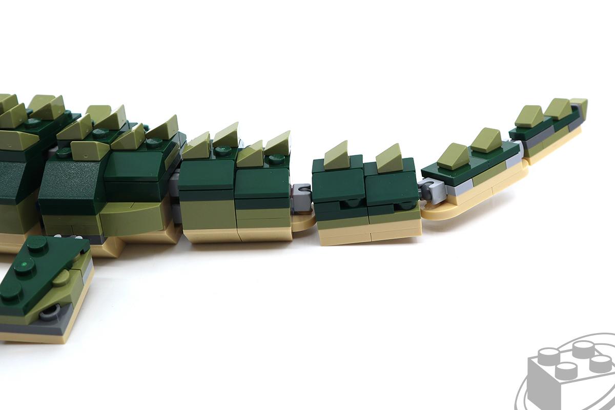 31121-crocodile-5