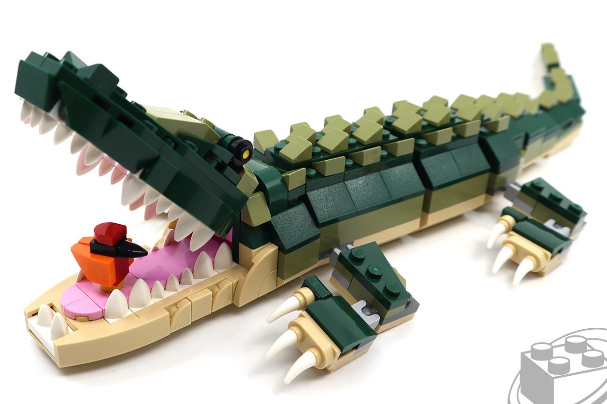 31121-crocodile-9